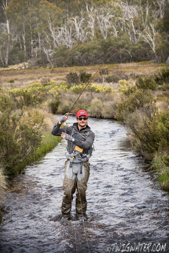 Twigwater, brook trout, fly fishing, small stream, trout, Snowy mountains