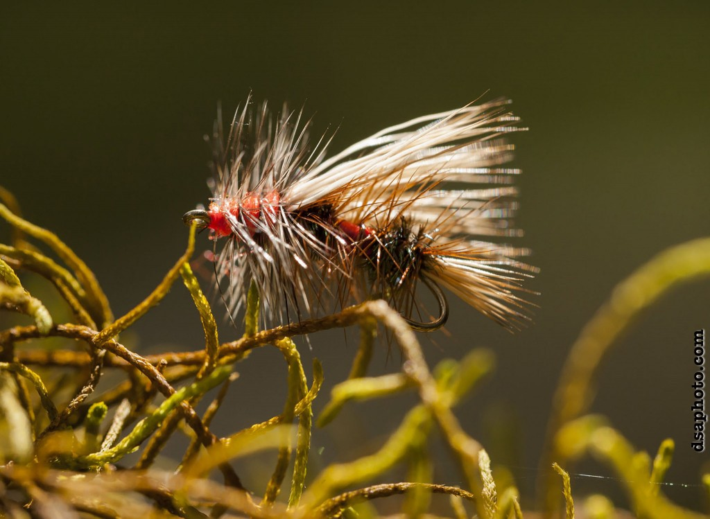 Dry fly twig water trout flies