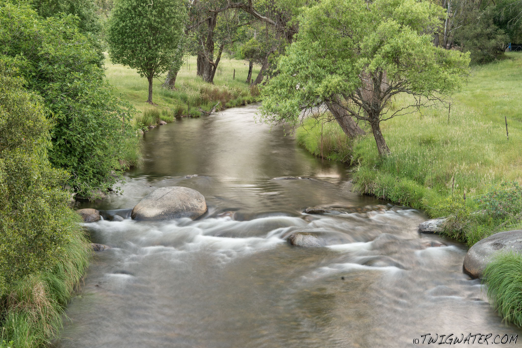 Snowy Creek, twigwater, small stream, trout fishing, fly fishing