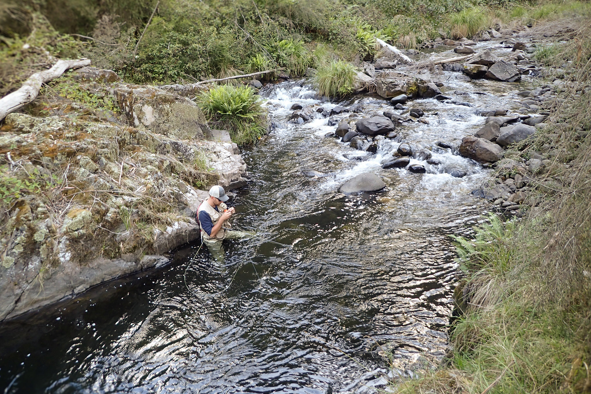 Small stream fly fishing in Australia
