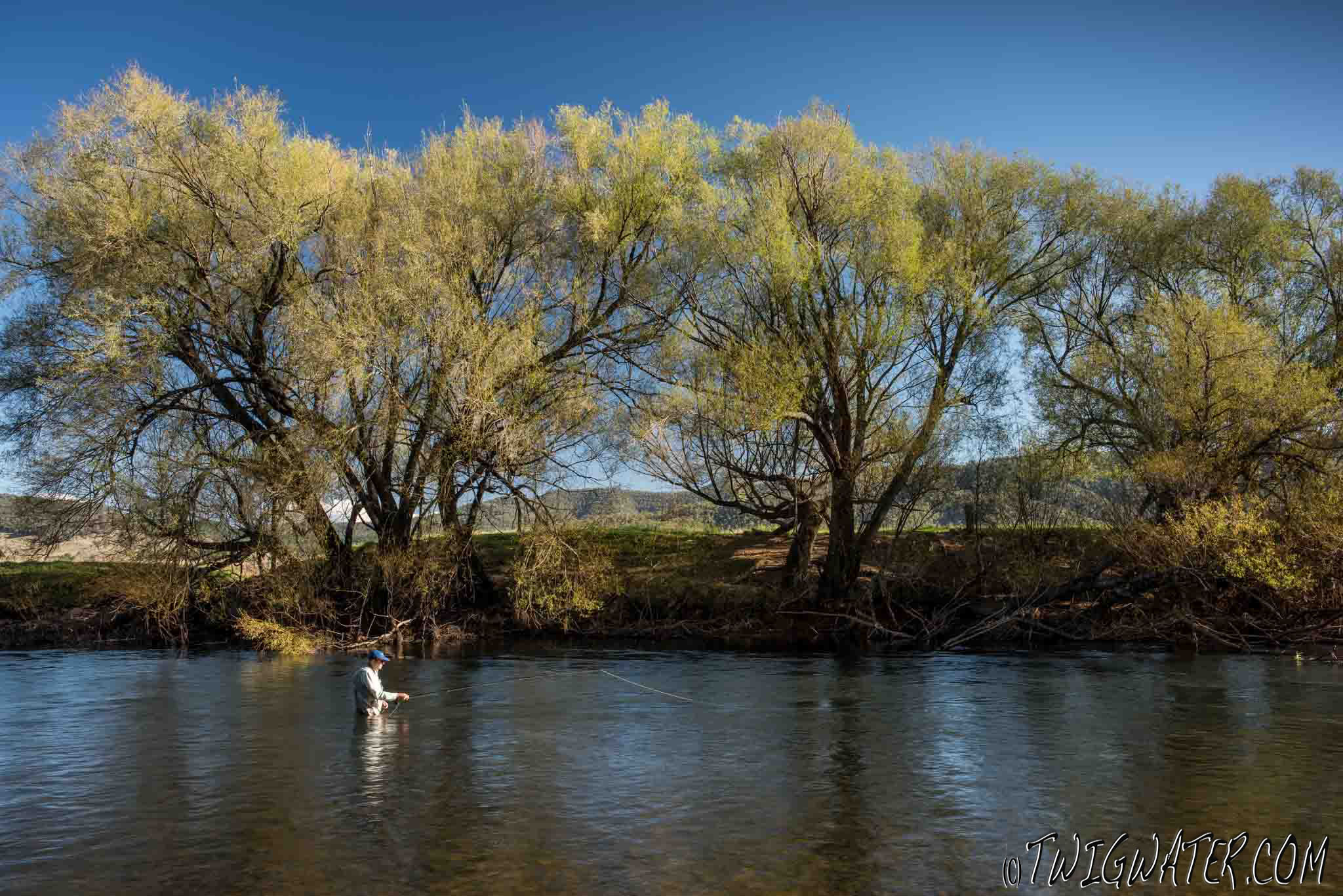 Twigwater Fly Fishing the Mitta Mitta River Northeast Victoria