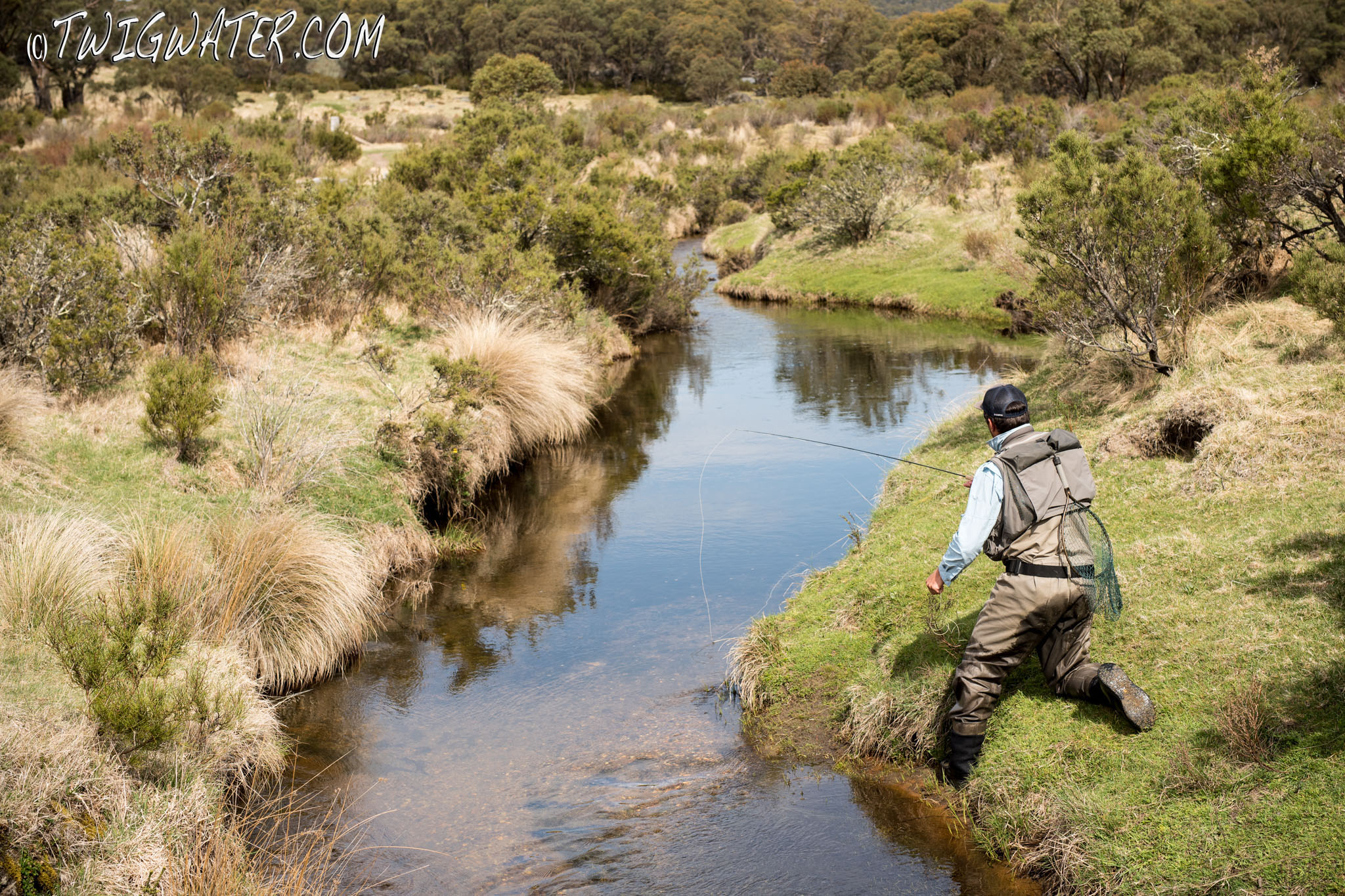 Small stream fly fishing at twigwater.com