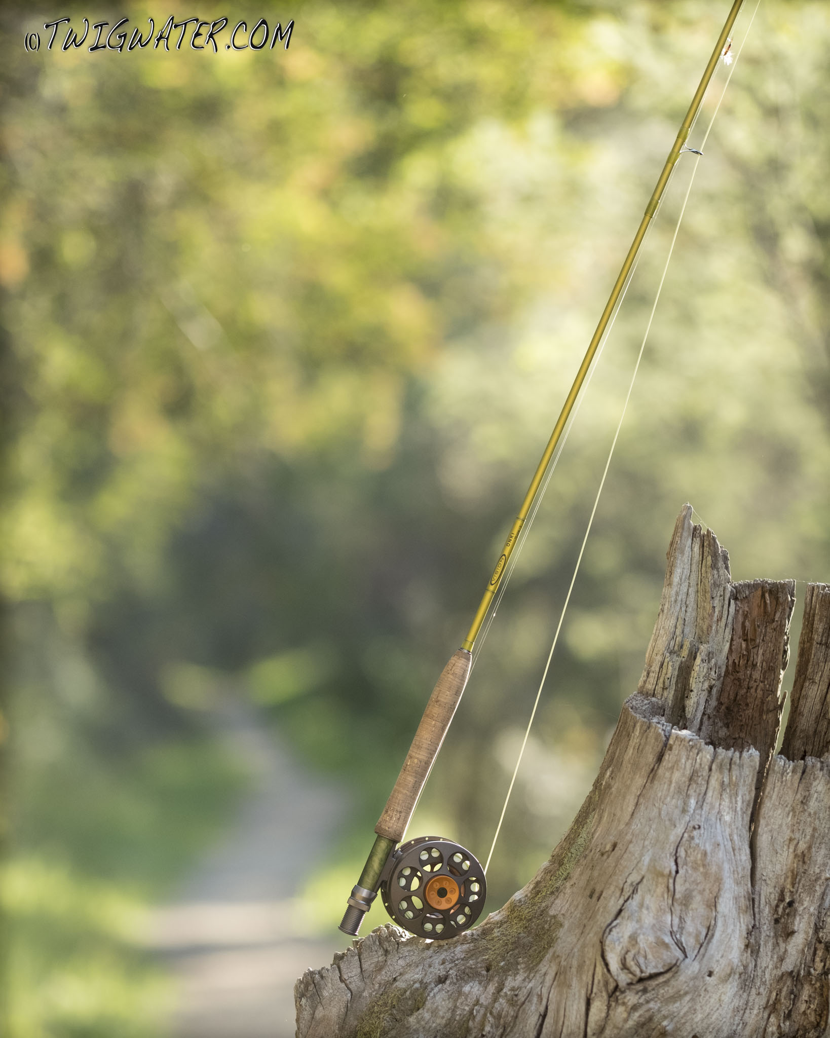 Vision Onki 9' 5 weight fly rod on Twigwater